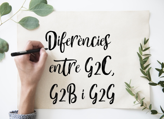 Diferències entre G2C, G2B i G2G